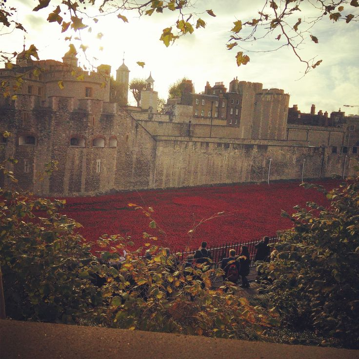 Blood Swept Lands and Seas of Red - Tower of London WW1 Poppy Memorial in London on the morning of 11/11 #TowerPoppies