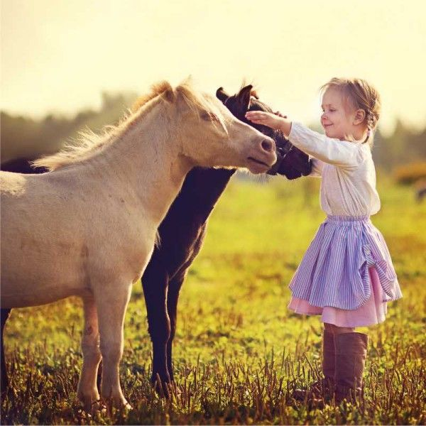 Experience Voucher: Half-day pony experience for children | Gifts from Franschhoek