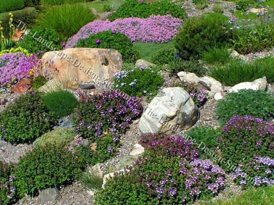 landscaping for sloping backyards | Colorful Hillside Rock Garden Planting Ideas