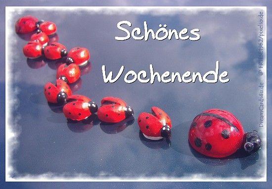 http://www.dreamcards4u.de/ecards/wochenende/woche-09.jpg