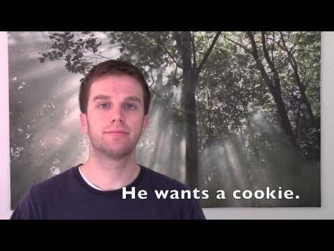 Engleza Lui Thomas Lesson 9 - To Want - Food