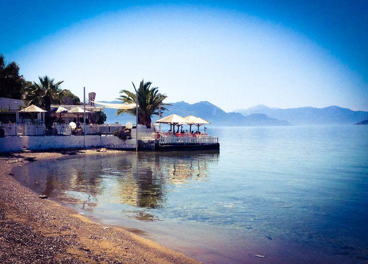Aegina | Egina | eprzewodnik.com