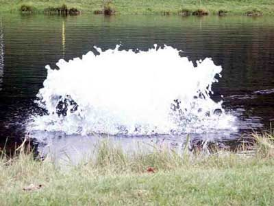 Kasco 1/2 HP 2400AF Pond Aerator – Surface Aeration. These reliable units are designed for maximum pumping volume and circulation. Although these surface pond aerators are not as decorative as the fountains, they are the best choice for maximum aeration in a shallow pond.