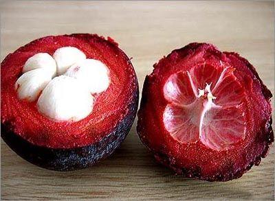 90 - El mangostino, mangostán o jobo de la India (Garcinia mangostana) es un árbol tropical perenne, se cree que originó en las Islas de la Sonda y las Islas Molucas. El árbol crece de 7 a 25 m (20-80 pies) de altura, posee un follaje muy denso siempre verde de hojas opuestas, grandes con nervadura central, con forma elíptica ovaladas de ápice acuminado y corto. El fruto comestible posee una corteza (exocarpio) de profundo color púrpura rojizo cuando madura.