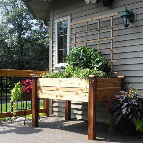 Gronomics Cedar Elevated Planter Box | from hayneedle.com