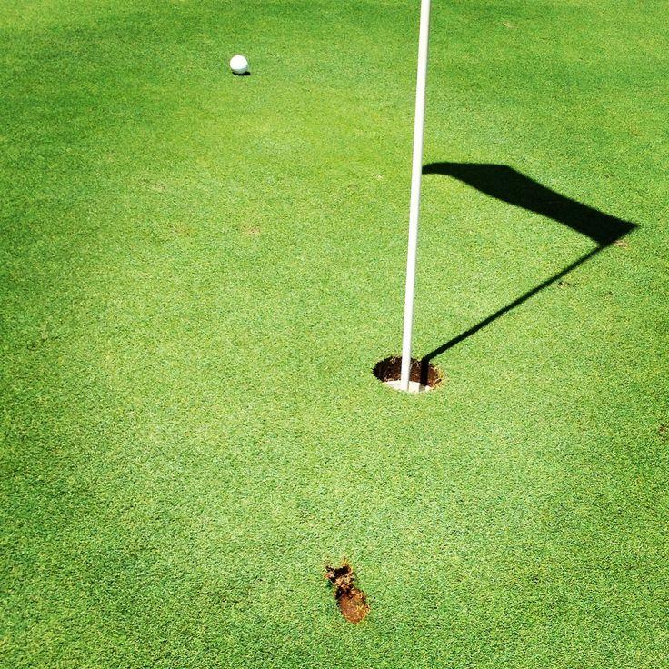 Golfing. Near hole-in-one.