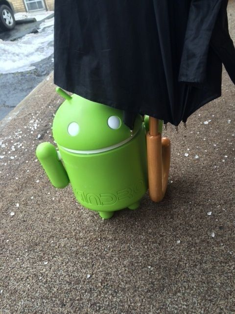 A little rain won't stop this little android from going outside to get a little fresh air! #AndyatDOM