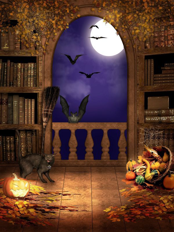 Фотографии Фоном Тыквы Черная Кошка Летучая Мышь Хэллоуин Фон Винил Фон Фотографии Wsj-020