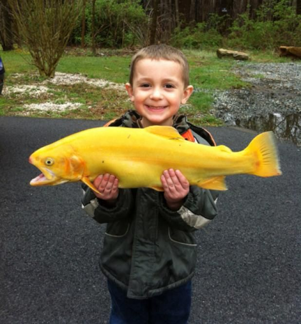 Catchbook Fishing App: Photo of the Day | Field & Stream