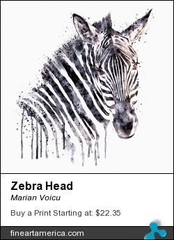 Watercolor painting of a zebra head.