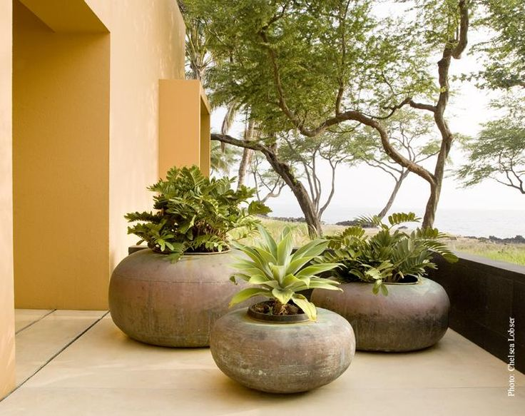 You'll need some space for containers like these but they bring some drama to this entry.