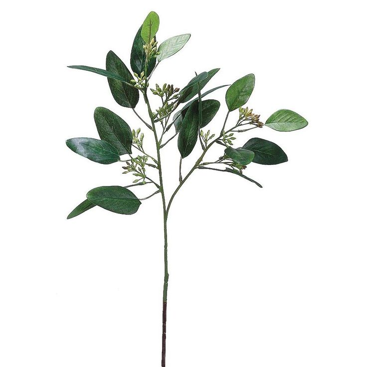 "Add texture and greenery to any bouquet or centerpiece with this 18"" Seeded Eucalyptus Spray in Green Burgundy. Afloral.com offers a wide variety of artificial greenery to add beauty to your creations"