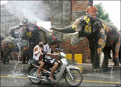 Did you know? Traditionally, the Thai New Year (or Songkran), is celebrated in April but the government changed the date so that the new year starts on January 1st to co-ordinate with western traditions. Most Thai people celebrate both.