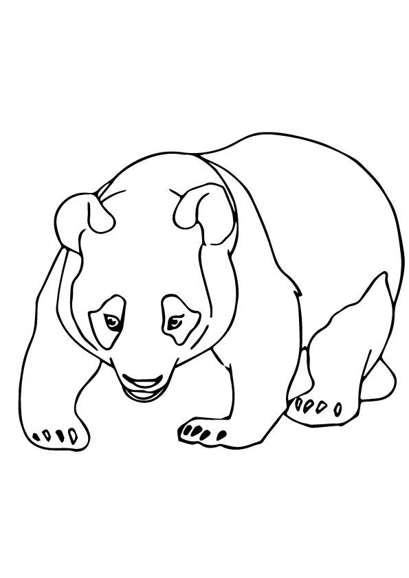 33 best coloring pages images on pinterest drawings, mandalas Cute Panda Coloring Pages Panda Bear Head Clip Art Eagle Coloring Pages Printable
