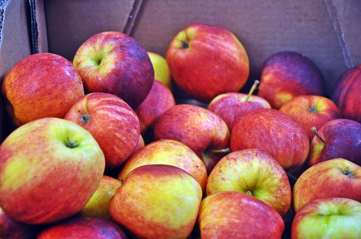 A box of beautiful apples delivered from our fruit supplier! #irishbaking #dublinbakery #dublincafe #fruit