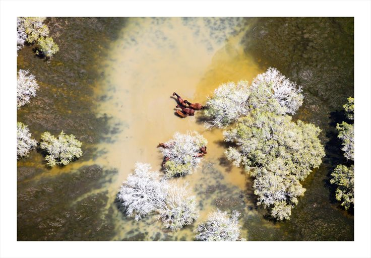 "Aerial photographer – Hulia Boz inaugural solo photographic exhibition ""Postcard from Australia"""