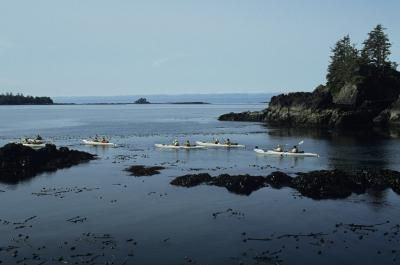 Guided Kayaking Tours In Victoria, Canada | LIVESTRONG.COM