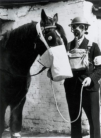Credit: Daily Herald Archive/SSPL via Getty Images 'The West Ham Borough Council Veterinary Department have devised a special gas protection bag for horses, and have instigated a corps of men and 21 dressing stations for any of the borough's 200,000 animals in the time of war. It is a large nose-bag which fits over the horse's head, and is fixed with a zip fastener, the idea being with a little food in the bag the horse would be quiet during an air raid. A long halter is also attached to…