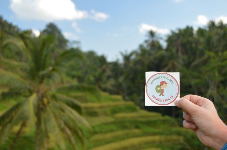 Si cum Aventurescu nu poate sta prea mult timp pe acasa, inainte de sarbatorile de iarna ne-am luat talpasita spre Indonezia in renumita insula Bali. Insula gazduieste cea mai mare comunitate hindu din Indonezia, in restul arhipeleagului fiind majoritari musulmani, fiind si una dintre cele mai vizitate si apreciate insule din lume, anual calcandu-i pragul atat oameni foarte bogati, cat si calatori cu rucsacul in spate, pentru ca este un loc in care oricine isi permite sa-si petreaca vacanta…