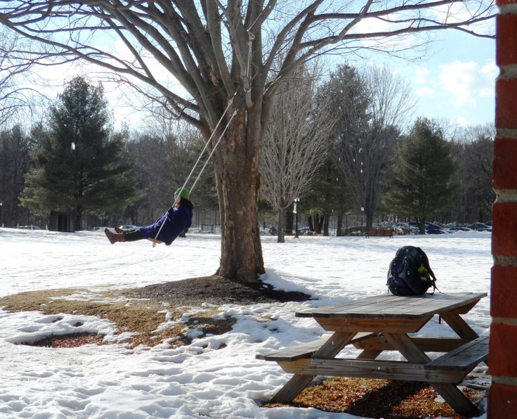 11 best around campus images on pinterest vermont faculty and is that grass i see spring is coming slow but sure fandeluxe Choice Image