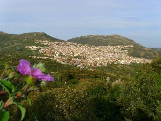 Panorama di Arbus con Fiore