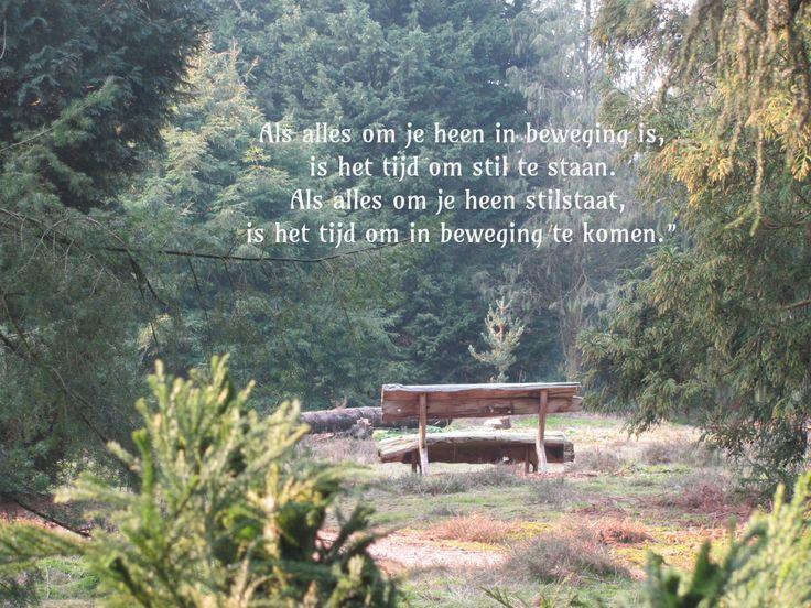 Bekende Citaten Natuur : Beste ideeën over wandelen citaten op pinterest