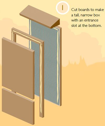 Build a bat house - because they eat a TON of bugs in your garden
