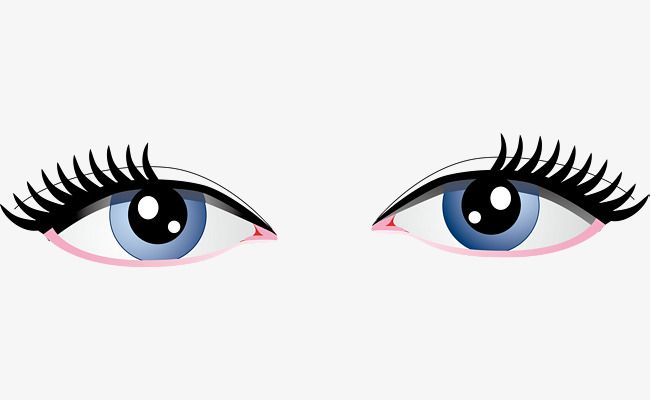 Beautiful Big Eyes Vector Diagram Both Eyes Lovely Eyes Cartoon