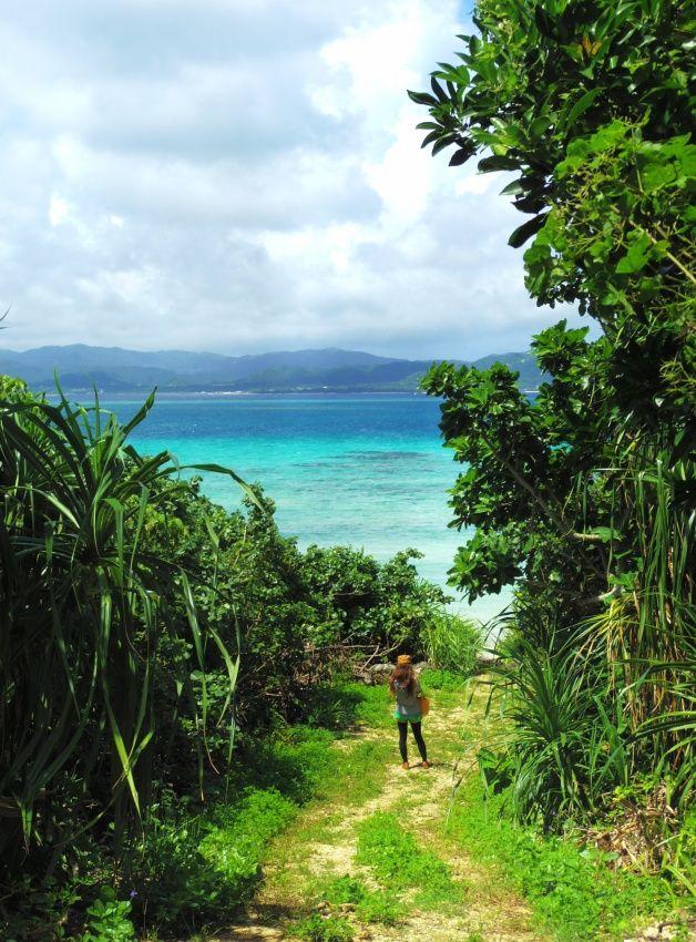 【 鳩間島 】  海へとつながる景色に気持ち高ぶる。