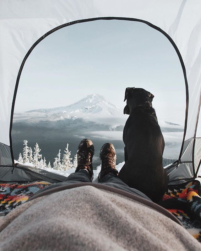 sharing a winter view from the tent with a friend   camping + outdoors #adventure