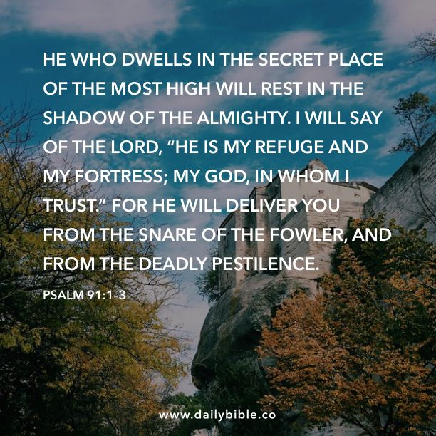 "Psalm 91:1–3  He who dwells in the secret place of the Most High will rest in the shadow of the Almighty. I will say of the LORD, ""He is my refuge and my fortress; my God, in whom I trust."" For he will deliver you from the snare of the fowler, and from the deadly pestilence."