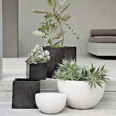 large modern outdoor planters