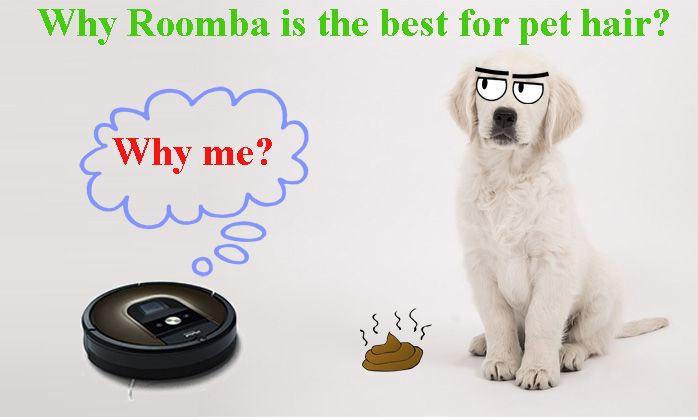 In as much as you love your pets, you probably hate their hair and fur. Cleaning this dirt can be quite a hassle as most vacuum cleaners are specially designed for vacuuming dirt and other debris. However, iRobot has made the life of pet owners easy with their Roomba Pet Series. These are Roomba vacuum cleaners that are specially designed for pet hair cleaning.