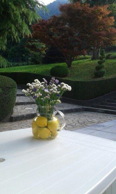 vaso von limoni