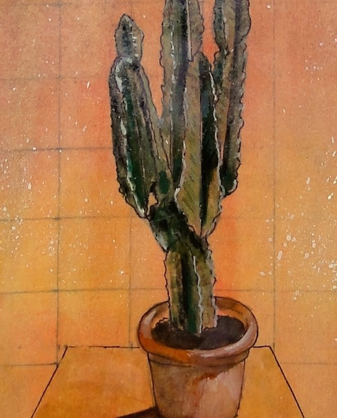 Watercolour painting and drawing of cactus.