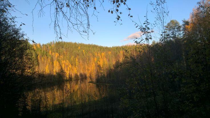Lykynlampi, Joensuu, Finland, October