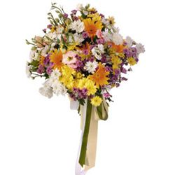 "Buy ""Bouquet Of Seasonal Flowers"" for $81.95."
