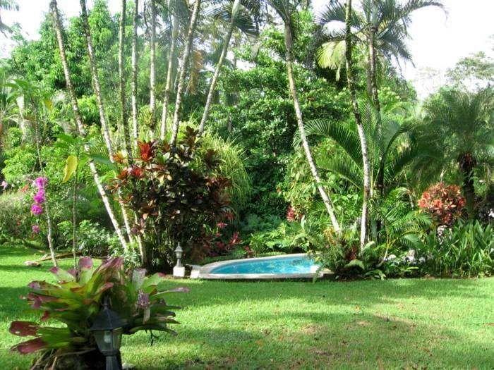Amenagement Jardin Avec Une Touche D Exotisme 50 Photos Amenagement Jardin Amenagement Jardin Avec Palmier Et Jardin Tropical