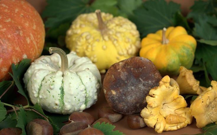 Concorso di ottobre : Zucca, funghi e castagne!
