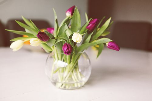 <3 Tulips: Flowers Gardens, Mothers Day, Tabletop Decor, Dorm Decor, Pretty Things, Posts, Bouquets, Pretty Flowers, Pretty Bloom