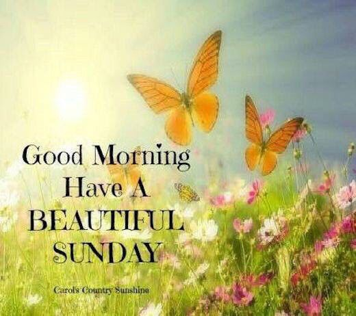 Good Morning Sunday Morning : Good morning have a beautiful sunday pictures photos and