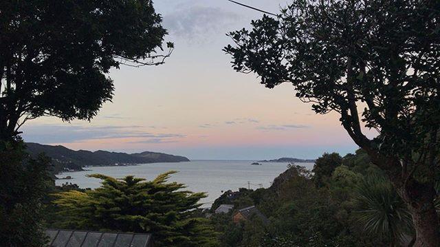 Morena! Good Morning! Nothing like a peaceful sunrise to start the day #rightnow #PointHoward #LowerHutt #lovethehutt #NewZealand #itsTime2Go!