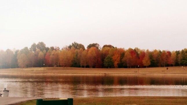 Lake: