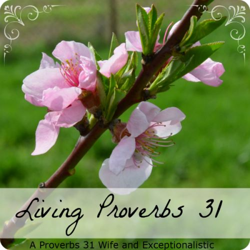 Matrimonial Monday Linkup name has been changed to Living Proverbs 31