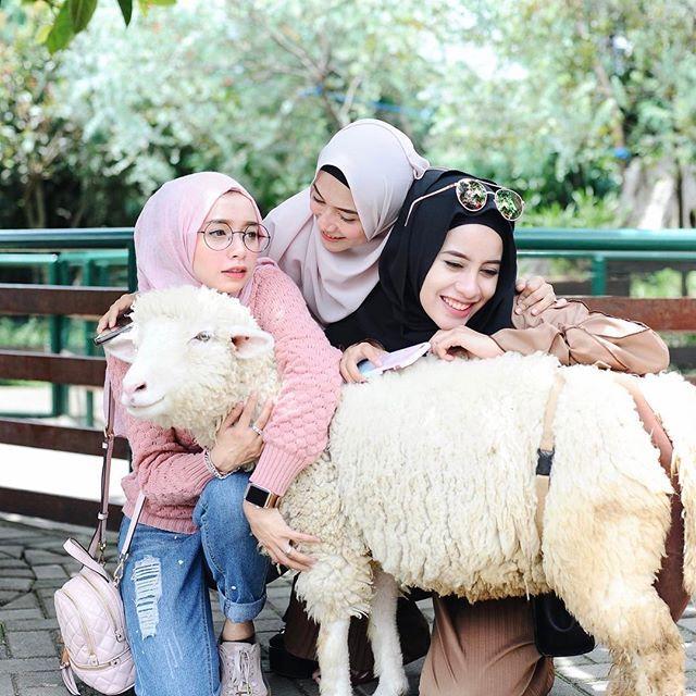 Sayangg domba domba Q @nisacookie @aghniapunjabi