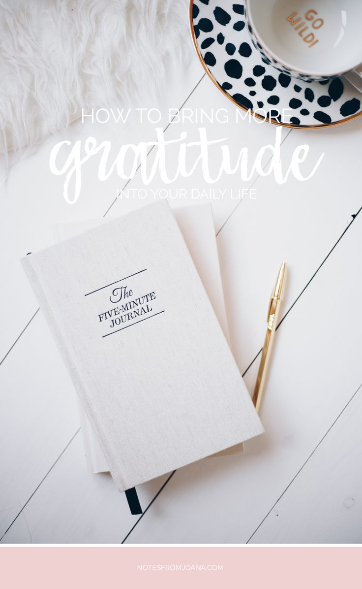 How To Bring More Gratitude Into Your Daily Life // The benefits of having a daily practice of gratitude + five ways to bring more gratitude into your life. Click to read more!