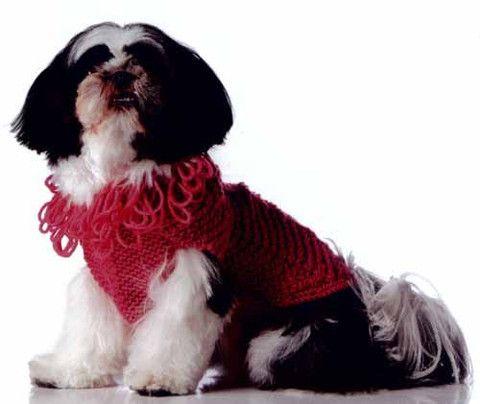 12 best Doggie stuff images on Pinterest | Hund häkeln, Hunde und ...