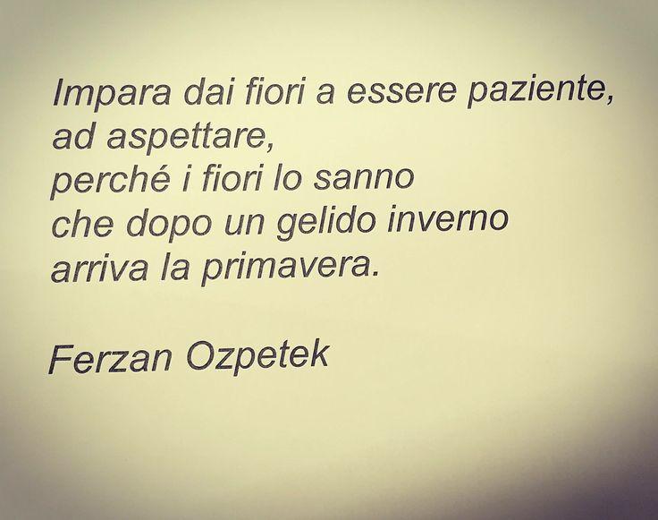 Ozpetek