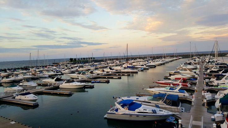 Marina in Chicago. So many beautifully boats.
