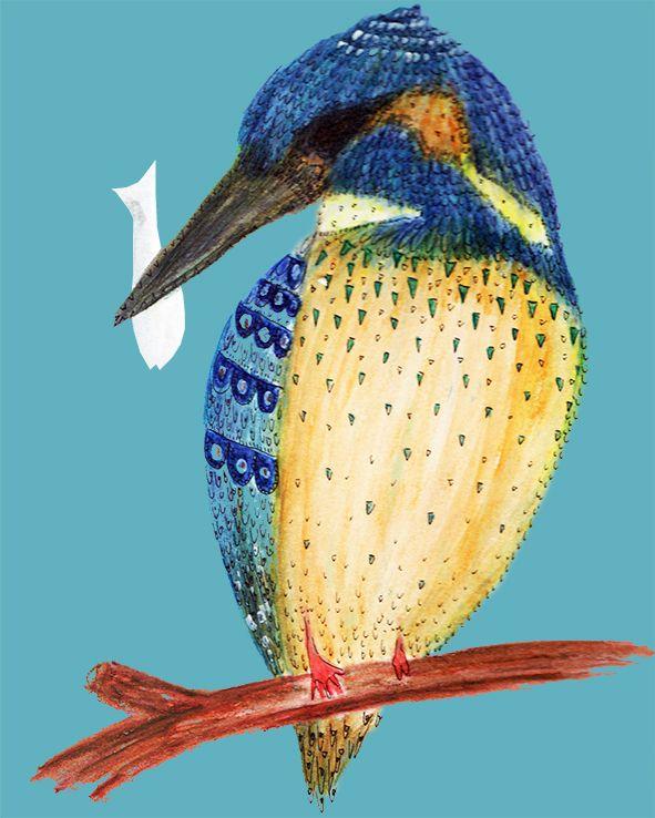 Aves emblemáticas chilenas: Martín el pescador Isabel Cerda www.isabelcerda.com